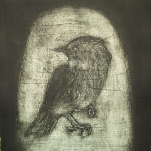 backward-glance-2009